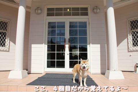 199_20110530012848.jpg