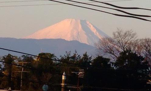 2011 1.1 富士山
