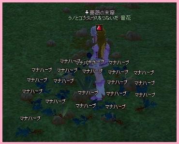 2011_05_14_003 初ヒュージ