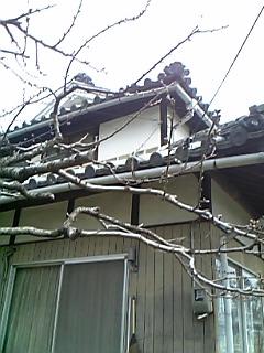 祖父母の家