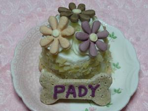 ケーキ5P1060566