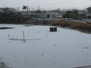 雪P1060603