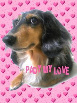 PADY+MY+LOVE2_convert_20110312123132.jpg