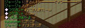 2007.02.05.07.jpg