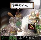 2007.02.05.09.jpg