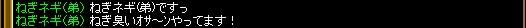 2007.11.19.01.jpg
