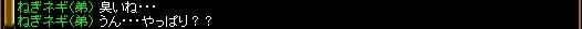2007.11.19.09.jpg