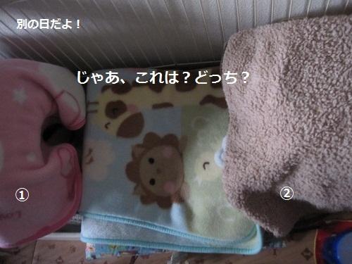001-2_20120314190029.jpg
