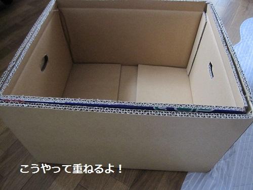 009-2_20120303131902.jpg
