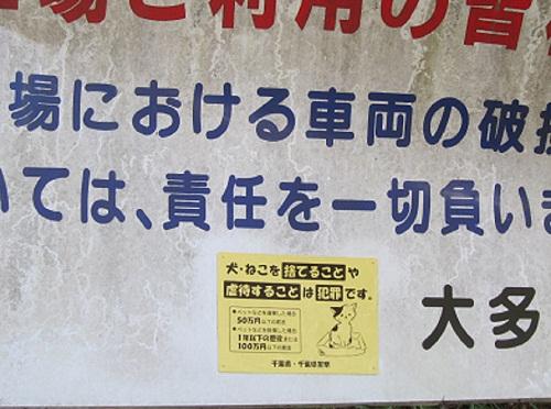 020-2_20120225163802.jpg