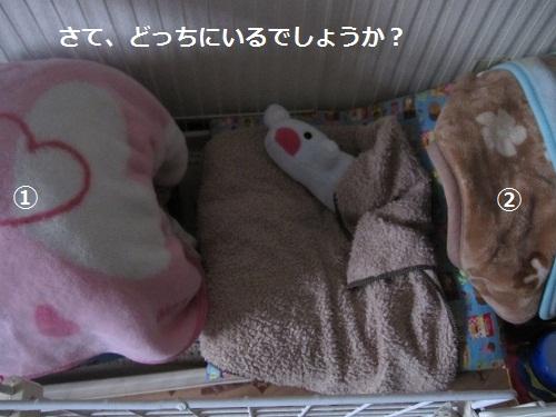 030-2_20120314184444.jpg