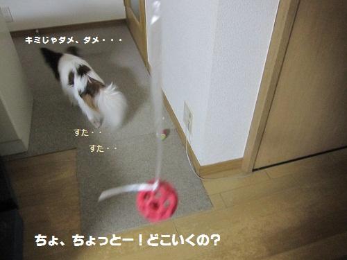 044-2_20120211191415.jpg