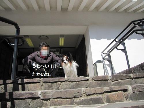 052-2-2_20120225164400.jpg
