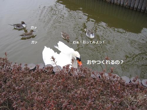 076-2_20120219190832.jpg