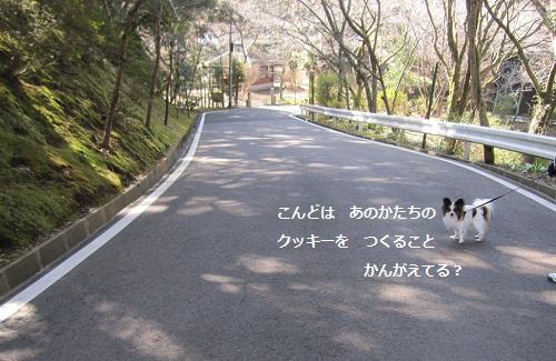 087-2_20120225164908.jpg