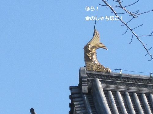 089-2_20120225164909.jpg