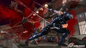 ninjagaiden2_00.jpg