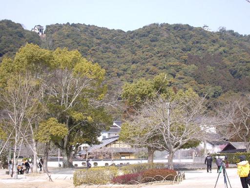 これが城山です