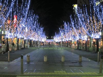 1101青葉公園の夜景
