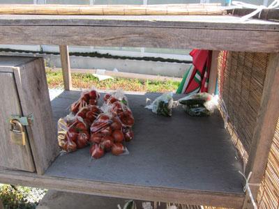 1103トマト牧場3