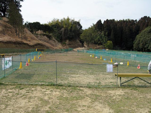2008 03 02 (3)