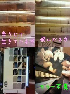 200802261921001.jpg