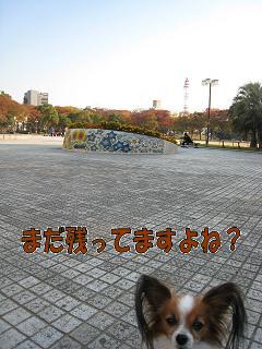 IMG_1320.jpg