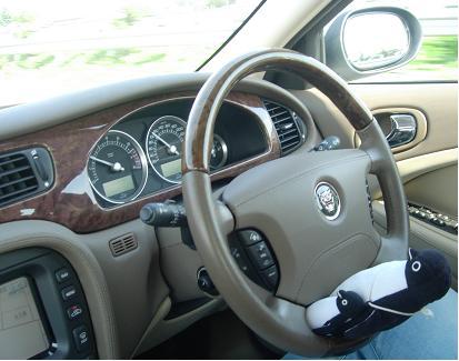 サルーンでドライブ