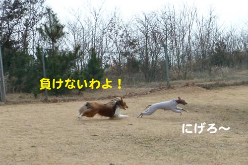 2-25-3_20120225161131.jpg