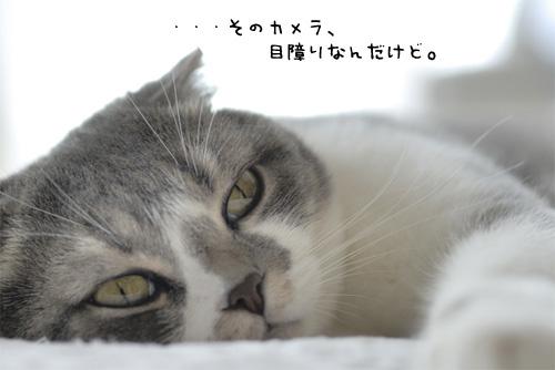 20070902_7