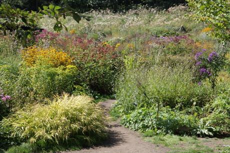 garden1155