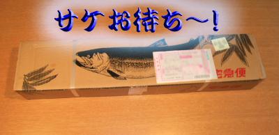 sake501