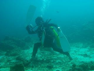 phuket similan diving