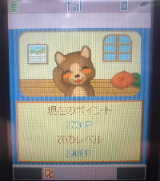 weblog051113kokoa2.jpg