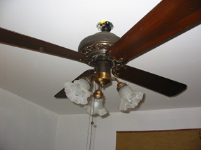 ceilingfanbed.jpg