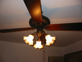 ceilingfanwithlight.jpg