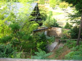 森の中の1軒屋
