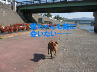 IMG_80891.jpg