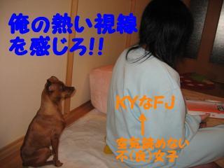 KYなFJはshiopii