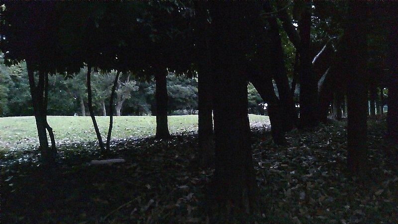 SN3I0104.jpg