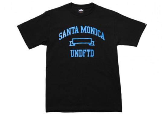 undefeated-regional-tshirts-2-540x380.jpg