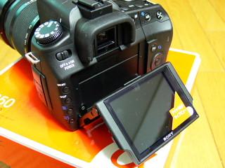 alpha0803.jpg