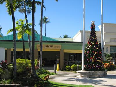 クリスマスツリー@ハワイ