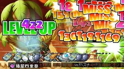 Maple120211_174954.jpg