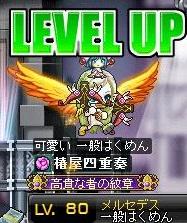 Maple120213_225700.jpg