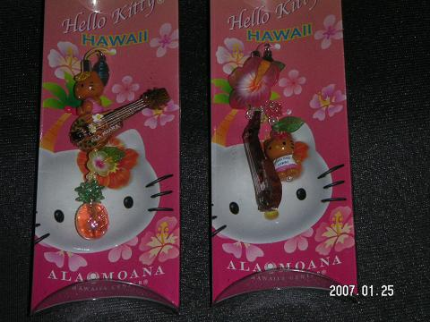 20070125_14_kitty.jpg