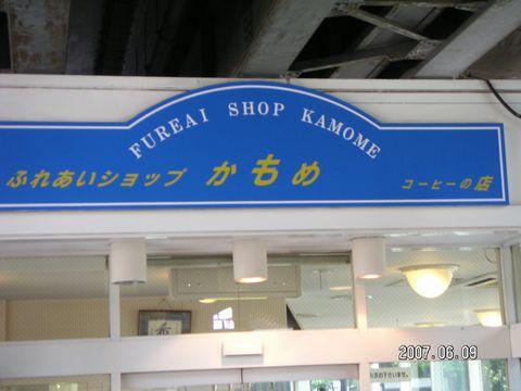 20070609_kamome.jpg