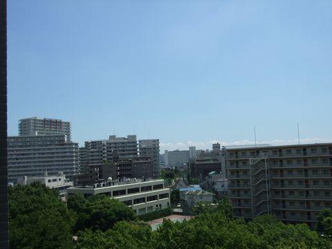 20070812_hiru.jpg
