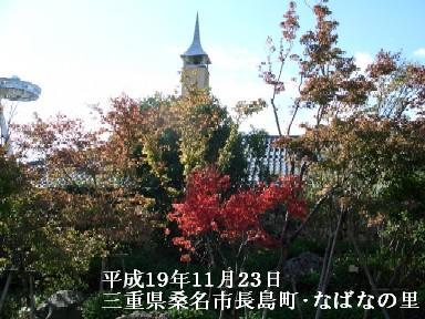 11月23日(金)香嵐渓・なばなの里 302