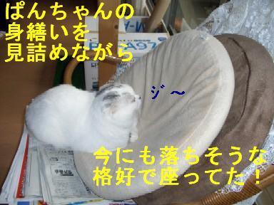 CIMG3632.jpg